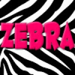 Zebra Nursery Rhymes